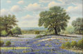 Texas:Early Texas Art - Impressionists, W. R. THRASHER (1908-1997). Untitled Bluebonnets. Oil on canvas.24in. x 36in.. Signed lower right. Born in Lamar County i...