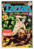 Bronze Age (1970-1979):Adventure, Tarzan #208 Group (DC, 1972) Condition: Average VF/NM.... (Total: 7 Comic Books)