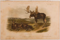 Books:Prints & Leaves, John James Audubon. Hand-Colored Lithographic Print of the MooseDeer. Plate LXXVI. Taken from The Quadrupeds of N...