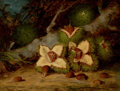Fine Art - Painting, American:Antique  (Pre 1900), FREDERICK STONE BATCHELLER (American, 1837-1889). Chestnuts,1877. Oil on panel. 9 x 12 inches (22.9 x 30.5 cm). Signed ...