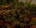 Fine Art - Painting, American:Antique  (Pre 1900), ARTHUR FITZWILLIAM TAIT (American, 1819-1905). Study fromNature, 1869. Oil on canvas. 12-1/2 x 14-3/4 inches (31.8 x37...