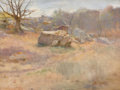 Fine Art - Painting, American:Antique  (Pre 1900), HARRY MILLS WALCOTT (American, 1870-1944). Landscape withRock, 1889. Oil on panel. 10 x 13 inches (25.4 x 33.0 cm).Sig...
