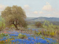 Texas:Early Texas Art - Regionalists, PORFIRIO SALINAS (American, 1910-1973). Landscape with Trees andBluebonnets. Oil on canvas. 12 x 16 inches (30.5 x 40.6...