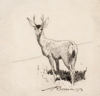 EDWARD BOREIN (American, 1873-1945) Standing Buck, 1897 Pen and ink on paper 6-3/4 x 7 inches (17