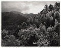 Photographs:20th Century, ANSEL ADAMS (American 1902 - 1984). Mt. LeConte, Autumn, GreatSmokey Mountain National Park. negative made circa 1948, ...