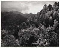 ANSEL ADAMS (American 1902 - 1984) Mt. LeConte, Autumn, Great Smokey Mountain National Park negative made circa 1948...