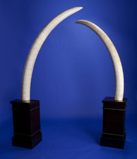 SPECTACULAR PAIR OF ANTIQUE ELEPHANT TUSKS