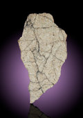 Meteorites:Lunar, NWA 6950 - FROM THE DARK LUNAR BASALTIC PLAINS, AN EXOTIC SAMPLE OFTHE MOON. . ...