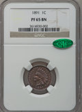 Proof Indian Cents: , 1891 1C PR65 Brown NGC. CAC. NGC Census: (14/7). PCGS Population(8/1). Mintage: 2,350. Numismedia Wsl. Price for problem f...