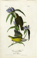 Antiques:Posters & Prints, Connecticut Warbler Audubon Royal Octavo Print. Plate number 99features the Connecticut Warbler, a very bright-chested spec...