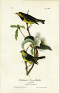 Antiques:Posters & Prints, Bachman's Swamp-Warbler Audubon Royal Octavo Print. Plate number108 highlights the black and yellow Swamp Warbler. The male...