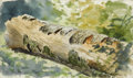 American:Hudson River School, JOHN HENRY HILL (American 1839-1922). Study of a Log, 1889.Watercolor on paper. 4 x 7in. . Dated lower left: Aug 20/...