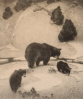 Prints, WILLIAM HERBERT DUNTON (American, 1878-1936). The Mountain Mother, Black Bear and Cubs, 1931. Lithograph on paper. 12 x ...