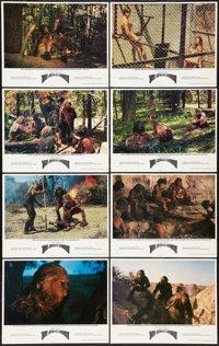 "The Animal Within (Wolper, 1974). Lobby Card Set of 8 (11"" X 14""). Documentary. ... (Total: 8 Items)"