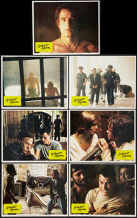 "Midnight Express (Columbia, 1978). Lobby Cards (7) (11"" X 14""). Drama. ... (Total: 7 Items)"