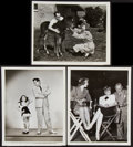 "Movie Posters:Comedy, Lucille Ball and Desi Arnaz Lot (Universal, 1946). Photos (3) (8"" X10""). Comedy.. ... (Total: 3 Items)"