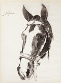 Fine Art - Work on Paper:Drawing, AMERICAN ARTIST (20th Century). Portrait of a Horse.Charcoal on paper. 25 x 19 inches (63.5 x 48.3 cm). Signed upperle...