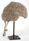 General Americana, AN ENGLISH BARRISTER'S HORSEHAIR WIG. 19th century. 5 inches high x7 inches wide x 8 inches deep (12.7 x 17.8 x 20.3 cm). ...