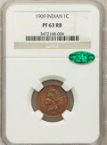 Proof Indian Cents: , 1909 1C PR63 Red and Brown NGC. CAC. NGC Census: (30/246). PCGSPopulation (54/185). Mintage: 2,175. Numismedia Wsl. Price ...