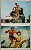 "Movie Posters:Adventure, Tarzan the Ape Man (MGM, 1959). Color Photos (2) (8"" X 10"").Adventure.. ... (Total: 2 Items)"