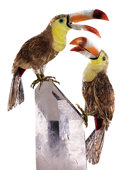Lapidary Art:Carvings, TOUCAN COUPLE on QUARTZ CRYSTAL BASE. ... (Total: 2 Items)