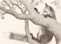 Pulp, Pulp-like, Digests, and Paperback Art, GARTH WILLIAMS (American, 1912-1996). Fox Eyes, page 22-23illustration, 1977. Ink wash and charcoal pencil on board.14...