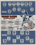 Football Collectibles:Others, 1972 Dallas Cowboys Poster Schedule. Exceptional example of the hanging posters schedule from the 1972 NFL season. Remains...