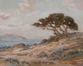Fine Art - Painting, American:Modern  (1900 1949)  , ANGEL ESPOY (American, 1879-1963). Cypress and Sand Dunes Alongthe California Coast. Oil on canvas. 24 x 30 inches (61....