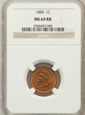 Indian Cents: , 1888 1C MS64 Red and Brown NGC. NGC Census: (308/140). PCGSPopulation (182/21). Mintage: 37,494,416. Numismedia Wsl. Price...