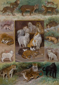 Fine Art - Painting, American:Other , WILLIAM HENRY DRAKE (American, 1856-1926). Felines. Gouacheon board. 23-1/4 x 18-3/4 inches (59.1 x 47.6 cm). Signed lo...