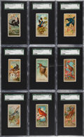 "Non-Sport Cards:Sets, 1888 N4 Allen & Ginter ""Birds of America"" Partial Set (18). ..."