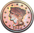 Proof Large Cents, 1855 1C PR66 Red and Brown PCGS. CAC. N-10, R.5 as a Proof....