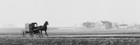 GEORGE TICE (American, b. 1938) Horse and Buggy, Lancaster, PA, 1961 Gelatin silver, 1979 4-1/2 x