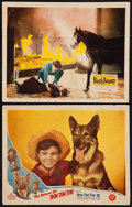 "Movie Posters:Adventure, The Return of Rin Tin Tin and Other Lot (PRC, 1947). Lobby Cards(2) (11"" X 14""). Adventure.. ... (Total: 2 Items)"