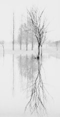 Photographs, MICHAEL KENNA (British/American, b. 1953). Reflection, Richmond, Surrey, England, 1975. Gelatin silver, 1979. 8-1/2 x 4-...