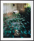 American:Modern, CHRISTOPHER BARNES (American, 20th Century). Ivy Bath, 1987.Exhibition C - print. 28 x 35 inches (71.1 x 88.9 cm). Bene...