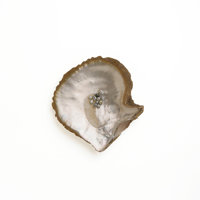 Ted Muehling (American, 20th Century) 25 Natural Pearls with Shell, 2010 Benefitting The Nature C