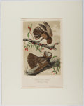 Books:Prints & Leaves, Audubon. Hand-Colored Lithographic Print of the Chuck-will'sWidow. Plate 41. Ca. 1856. Octavo, measuring approx...