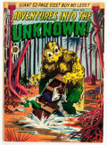 Golden Age (1938-1955):Horror, Adventures Into The Unknown #24 (ACG, 1951) Condition: FN-....