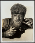 """Movie Posters:Horror, Lon Chaney Jr. as The Wolf Man (Universal, 1941). Portrait Photo(8"""" X 10"""").. ..."""