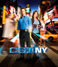 Movie/TV Memorabilia:Props, Set Visit For 2 to CSI: NY and a CSI:NY Swag Bag. Benefitting STOMPOut Bullying. ...