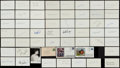 Autographs:Index Cards, Baseball Greats Signed Index Cards Lot Of 50+....