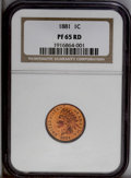 Proof Indian Cents: , 1881 1C PR65 Red NGC. A deeply reflective and eye-catching Gem with vivid orange-copper over much of the coin and stunning ...