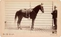 Photography:Cabinet Photos, Albumen Boudoir Card: D. W. Thompson of Santa Barbara, CaliforniaWith His Famous Mexican Saddle, 1899....