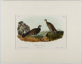 Books:Prints & Leaves, Audubon. Hand-Colored Lithographic Print of the DuskyGrouse. Plate 295. Ca. 1856. Octavo, measuring approx. 10....