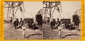 """Photography:Stereo Cards, Pristine Civil War Brady Stereo View """"2595 Group of Signal Officers, Cobbs Hill, Va. ..."""