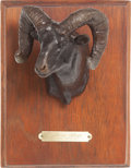 Long Guns:Bolt Action, Limited Edition Bighorn Sheep Bronze by Lee Lester....