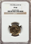 Proof Buffalo Nickels: , 1936 5C Type Two--Brilliant Finish PR66 NGC. NGC Census: (190/110).PCGS Population (271/123). Mintage: 4,420. Numismedia W...