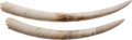 Miscellaneous:Ephemera, A Matched Pair of African Elephant Tusks.... (Total: 2 Items)