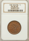 Large Cents: , 1856 1C Upright 5 MS64 Brown NGC. NGC Census: (217/163). PCGSPopulation (88/27). Mintage: 2,690,463. Numismedia Wsl. Price...